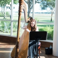 wedding harp pics by Eric & Jenn Photography
