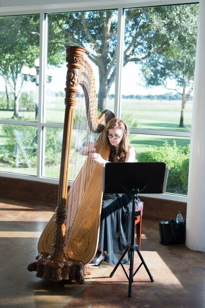 wedding harp pics by Eric & Jenn Photography