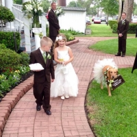 a dog, a ring bearer, and a flower girl.JPG