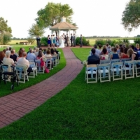 outdoor wedding on a beautiful june day