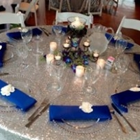 beautiful reception in vivid blues.jpg