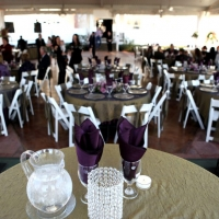 sleek receptions at House Plantation - wedding reception photos