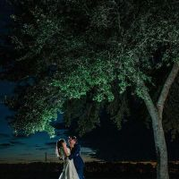 Newlyweds Under the Tree