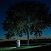 Under-the-Tree-1803-min