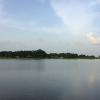 lakeviews and House Plantation grounds