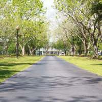 landscaped-drive-for-a-Houston-wedding-min