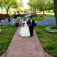 Horse and carriage and the bride at the entrance of House Plantation