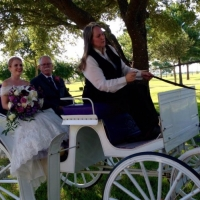 horse and carriage arrival at House Plantation