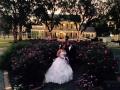 roses at House Plantation - wedding venue photos