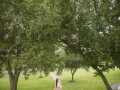 view of the wedding couple and landscaping at House Plantation