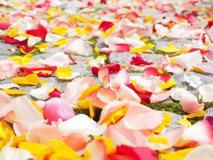 rose petals wedding ideas