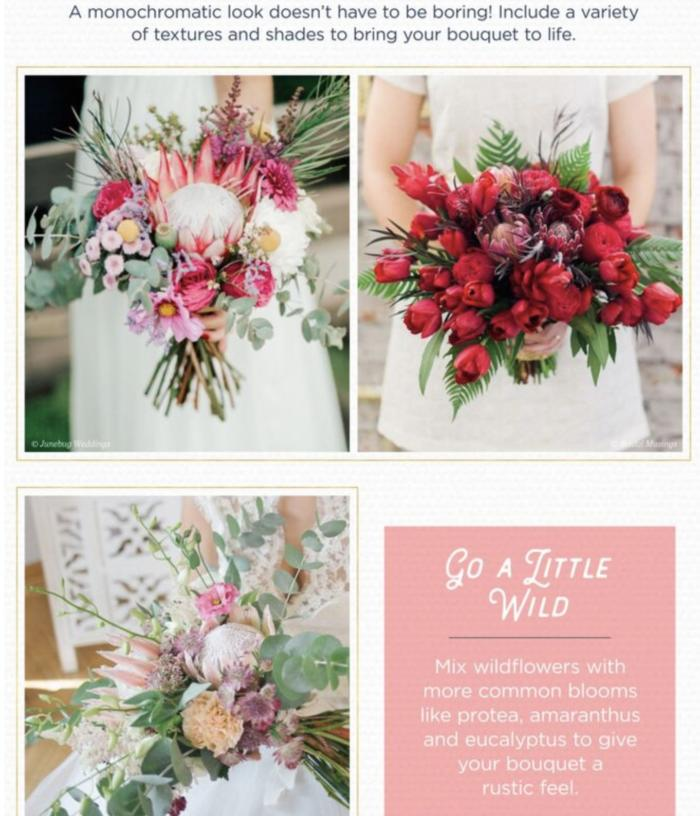 11 Protea Flower Ideas for your Wedding Day | House Estate